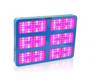 LED Grow Light 300pcs*10W