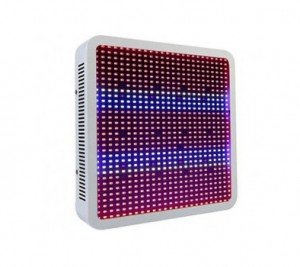 LED Grow Light SMD5730 800pcs