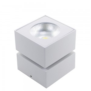 Surface Down Light / 7W