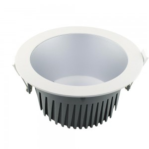 Project Downlight (6W / 12W / 18W / 36W / 48W )
